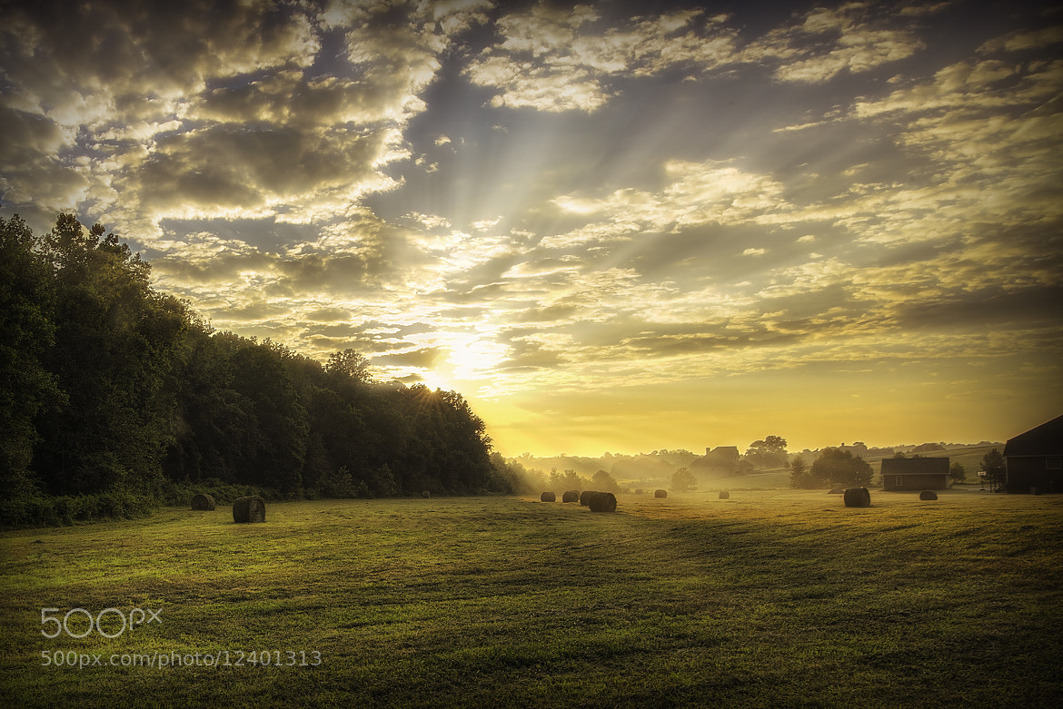 Photograph Morning by Todd Leckie on 500px