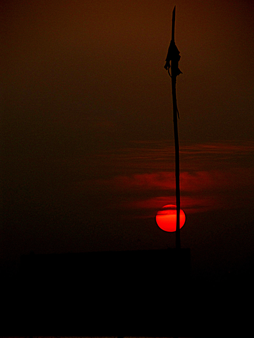 Photograph The song of dusk by Rudrapratap Datta on 500px