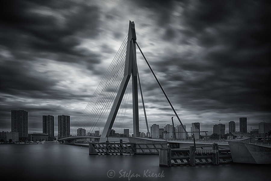 The Erasmus-bridge in Rotterdam
