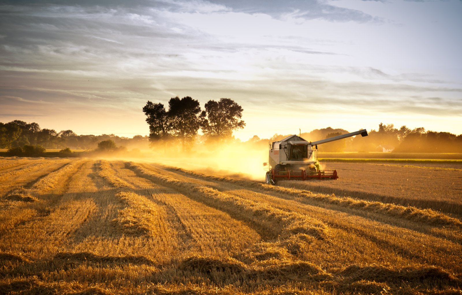 Photograph Harvest time by Hans Weichselbaumer on 500px