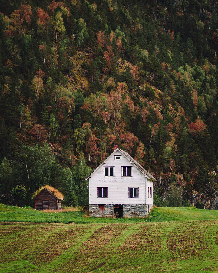 Hints of Autumn in Norway by Rob Sese on 500px.com
