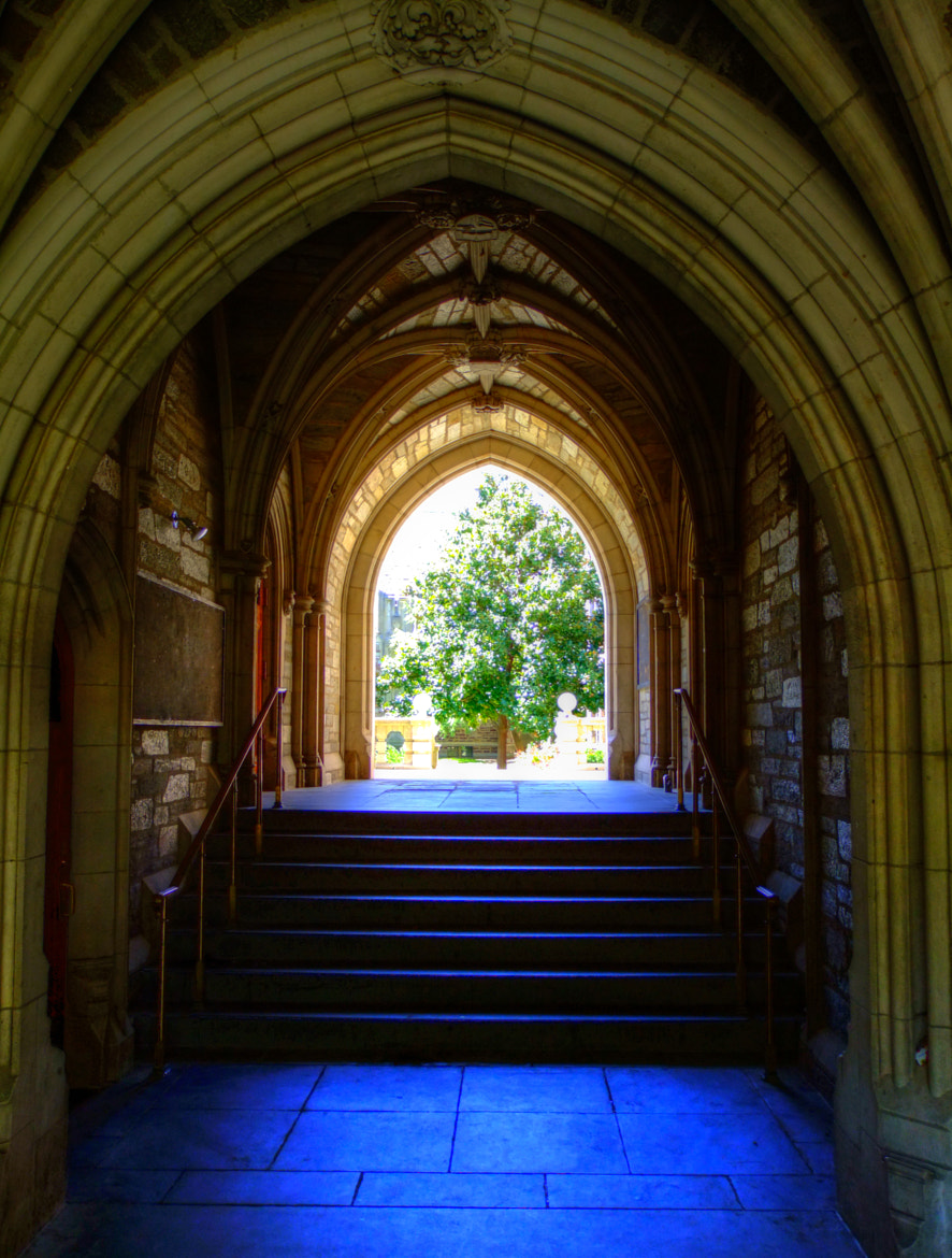 Photograph 8-23-11-PRINCETON-HDR-52 by mac dunlap on 500px