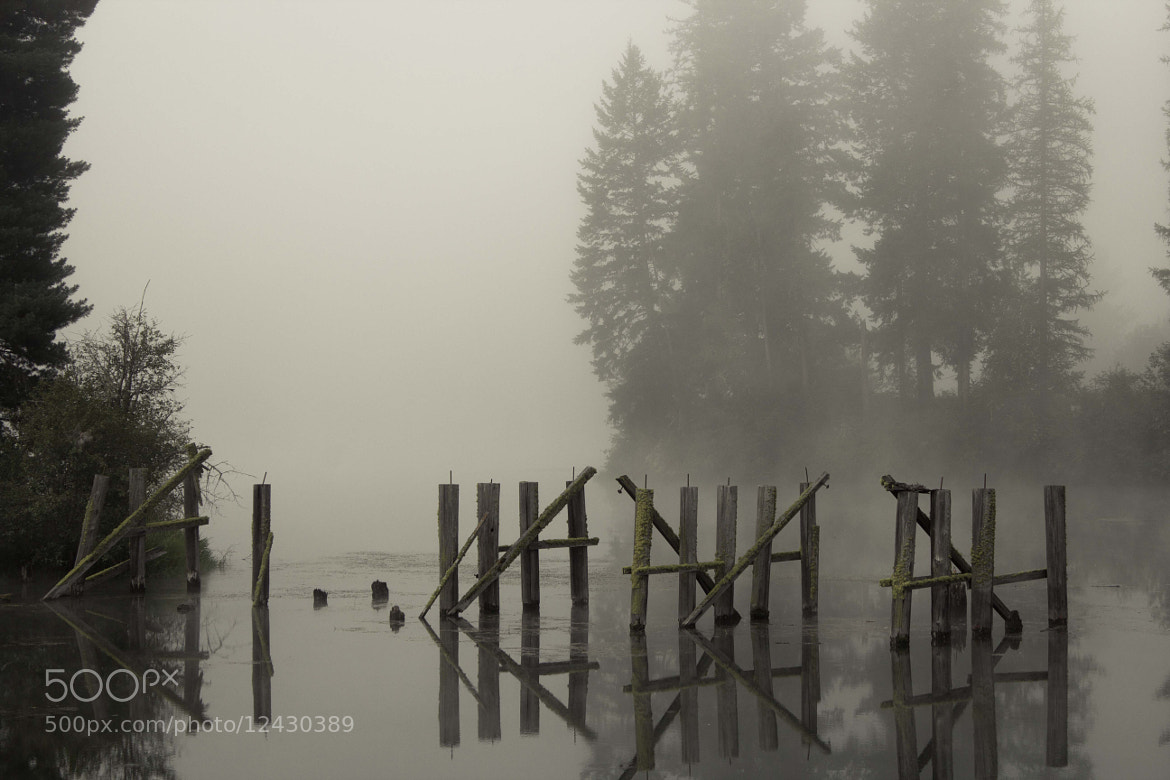 Photograph Flooded Fence by Nathan Kroeker on 500px