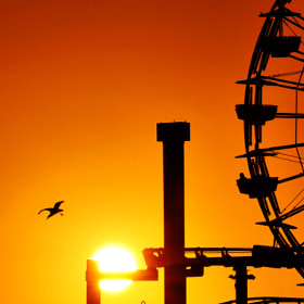Ferris Wheel at Sunset at Santa Monica Pier- August 24, 2012 por Rich Cruse (cruse) on 500px.com