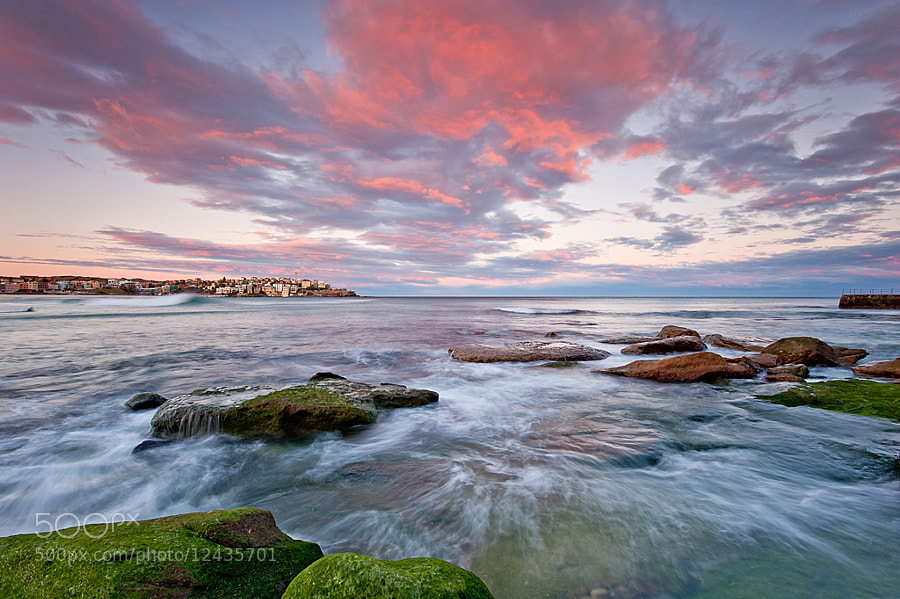 Photograph Sydney - Bondi Beach by Teo Tim on 500px
