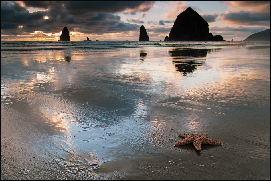 Photograph Stars At the Cannon Beach by Igor Laptev on 500px