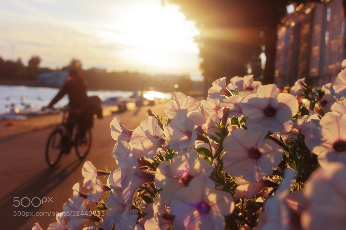 Photograph Morning cyclist  by Luca Febbraio on 500px