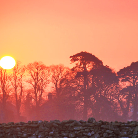 Bryansford Pink Sunrise