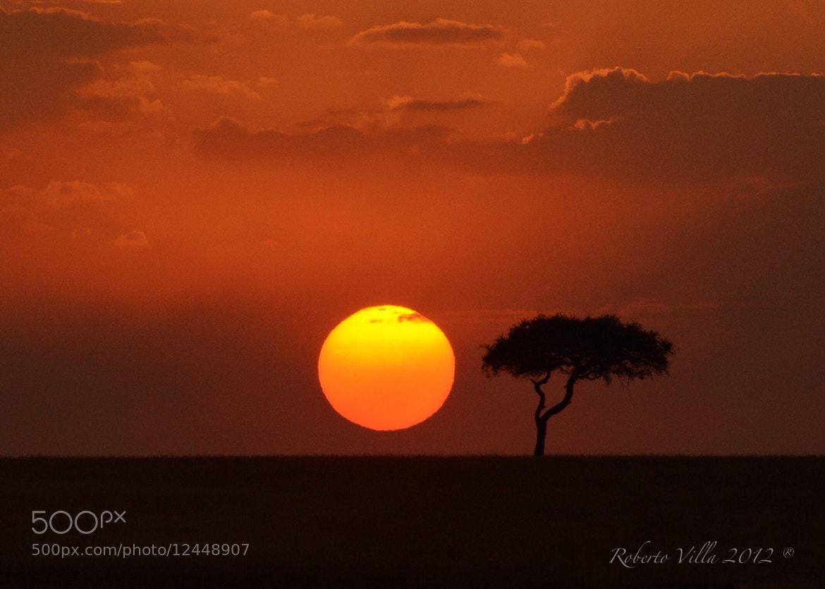Photograph African Sunset - Masai Mara NP by Roby Villa on 500px