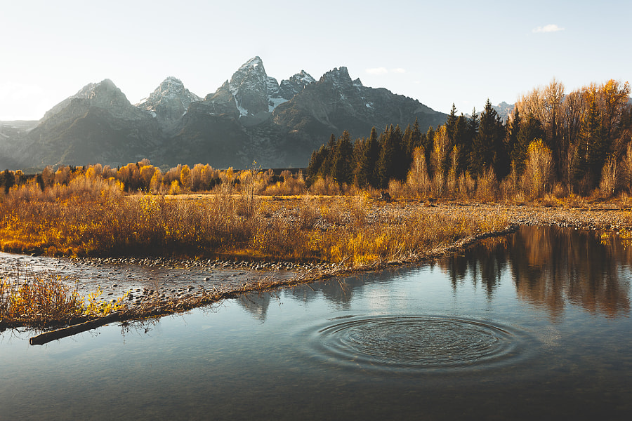 Autumn in the Tetons by Rob Sese on 500px.com