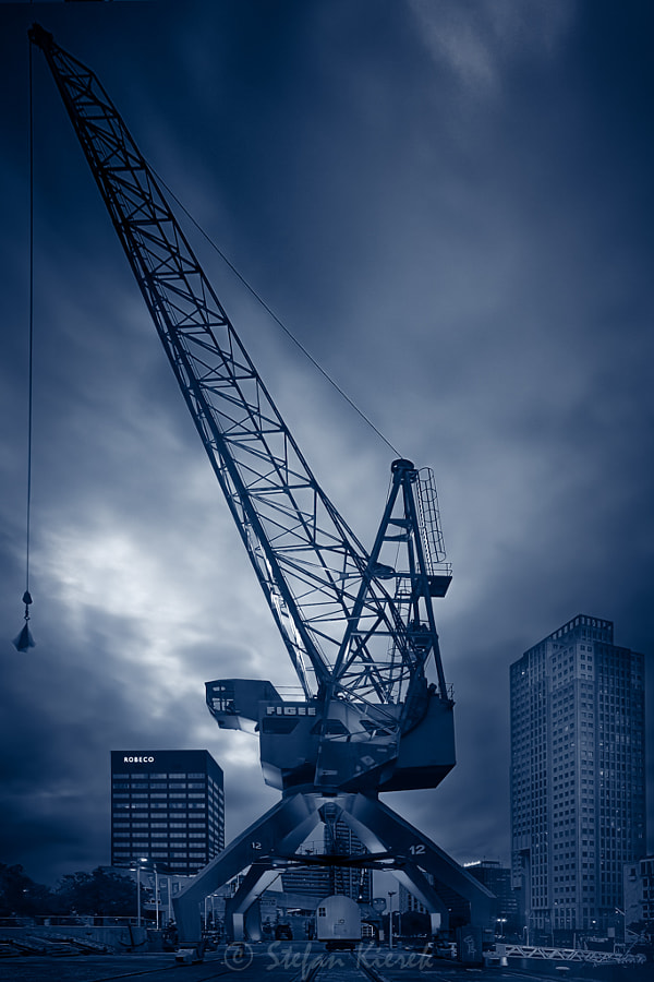 A crane in the evening