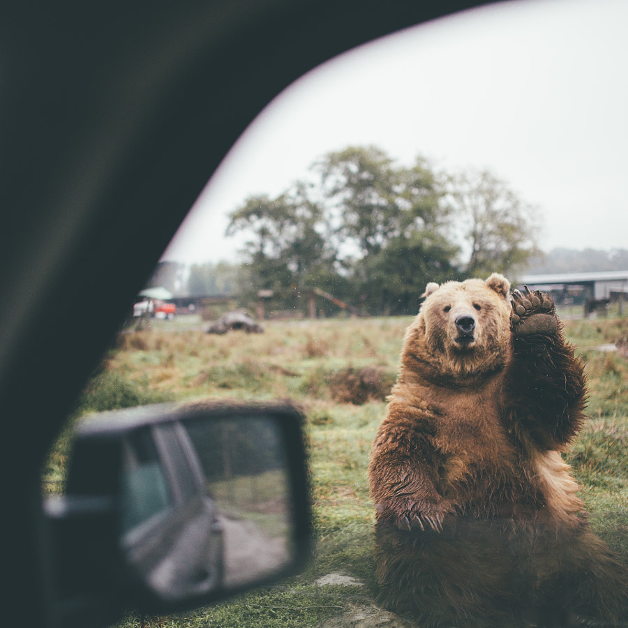 Saying Goodbye Is Never Easy by Dylan Furst on 500px.com