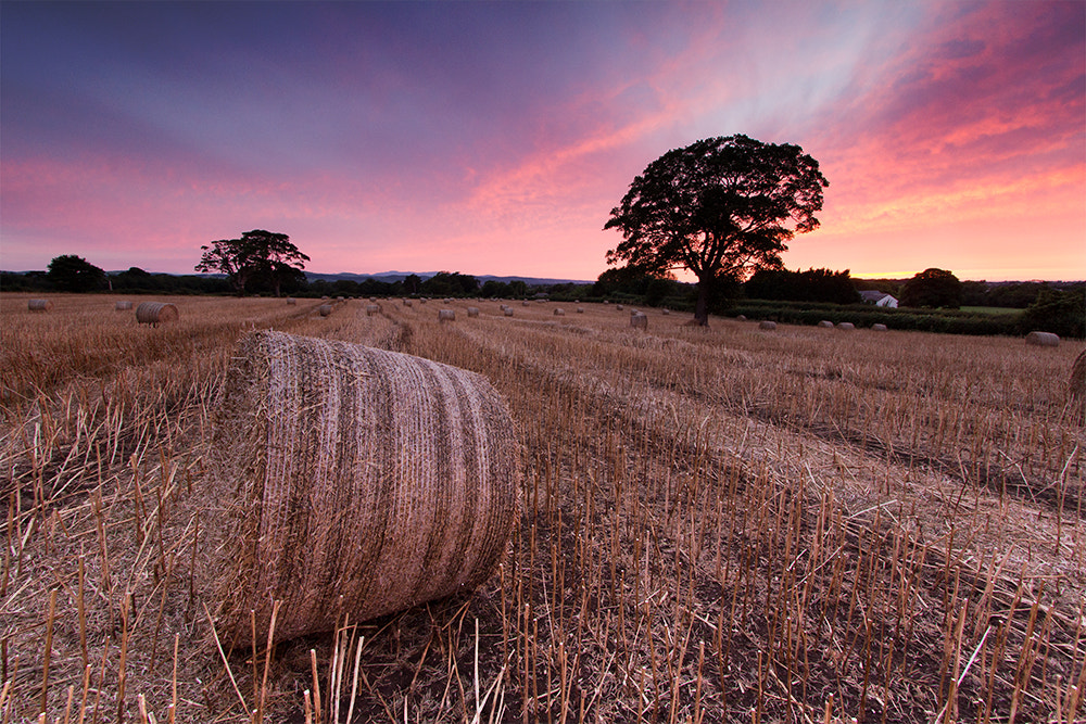 Photograph The Straw Bales by Anthony Owen-Jones on 500px