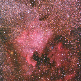 Due to its shape this nebula is called North America nebula. This photograph is taken just with a normal 200 mm telephoto lens. However the exposure time was one hour.