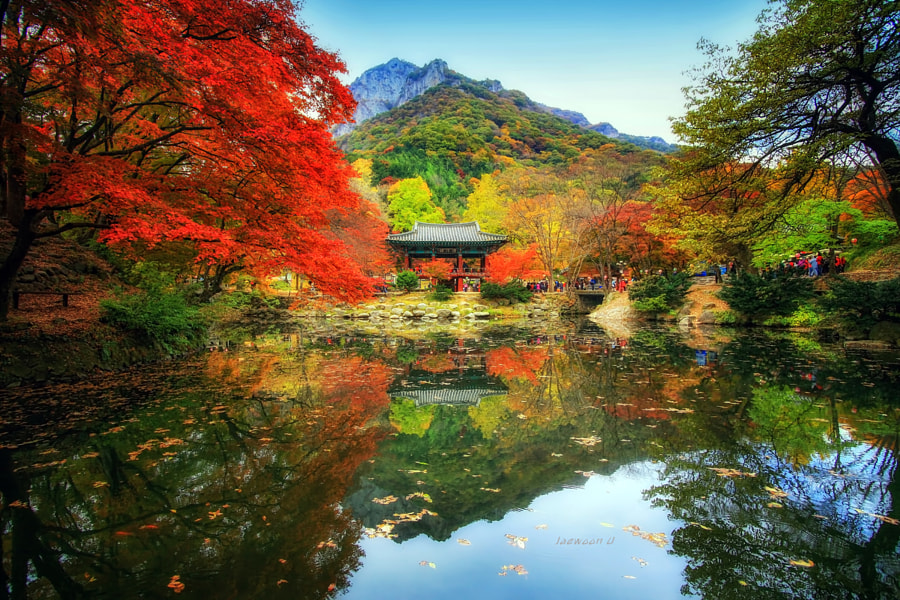 Autumn Reflection by Jaewoon U on 500px.com