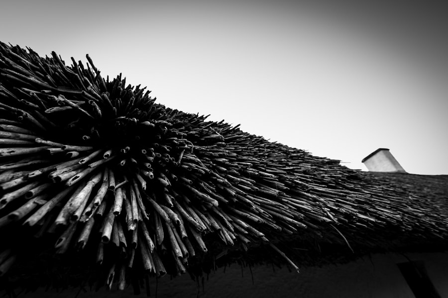 Photograph Thatch on Burns' Cottage by Ross Vernal on 500px