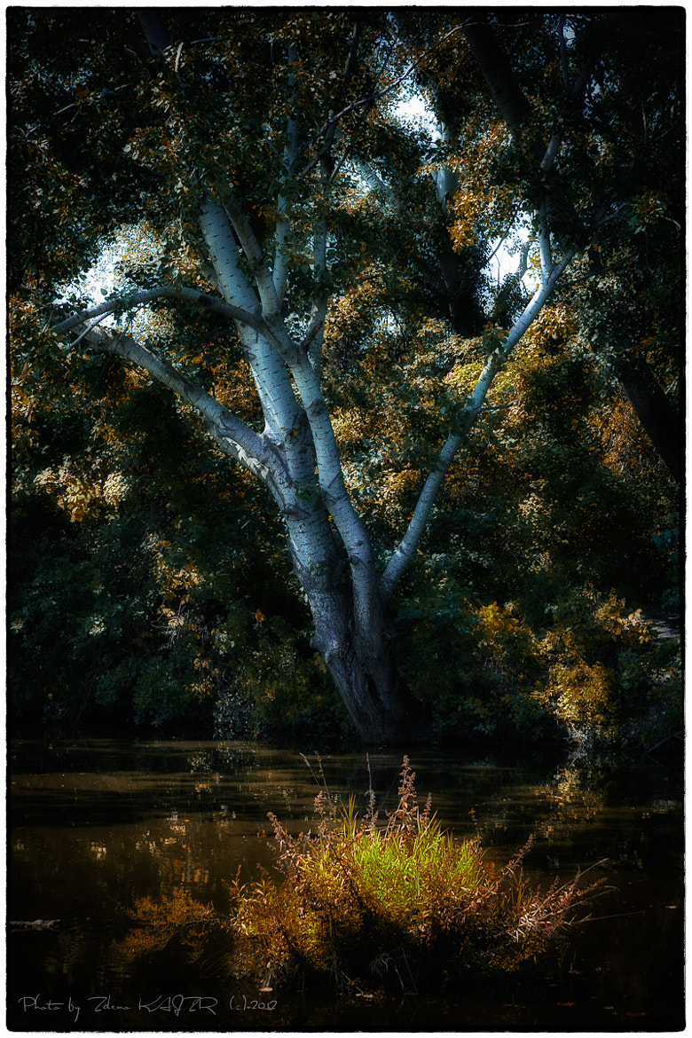 Photograph Afternoon mood (2) by Zdeno Kajzr on 500px