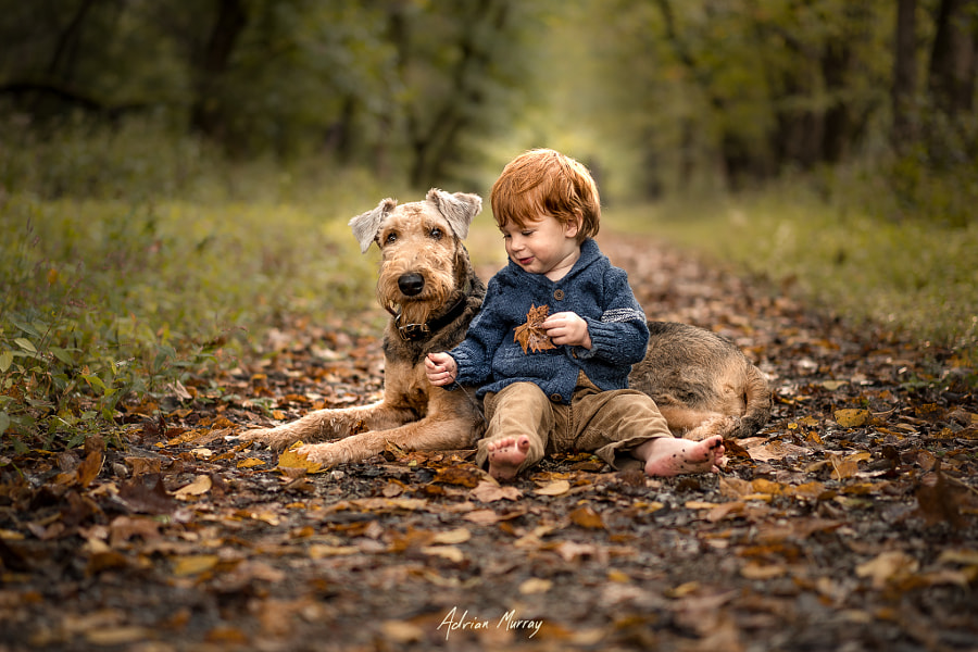 A Walk in the Park by Adrian C. Murray on 500px.com