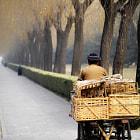 chinese farmer returning from market in beijing