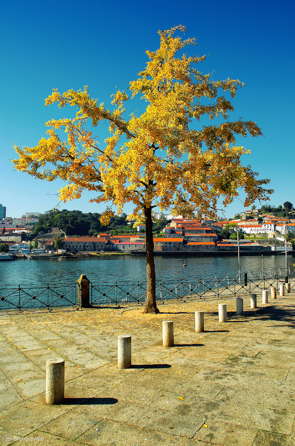 Photograph River Douro by Bruno do Val Benes on 500px