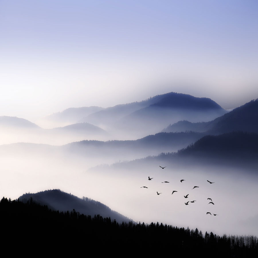 Photograph Flying Over The Fog by Philippe Sainte-Laudy on 500px