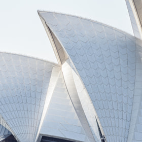 Detailed look at the Sydney Opera House