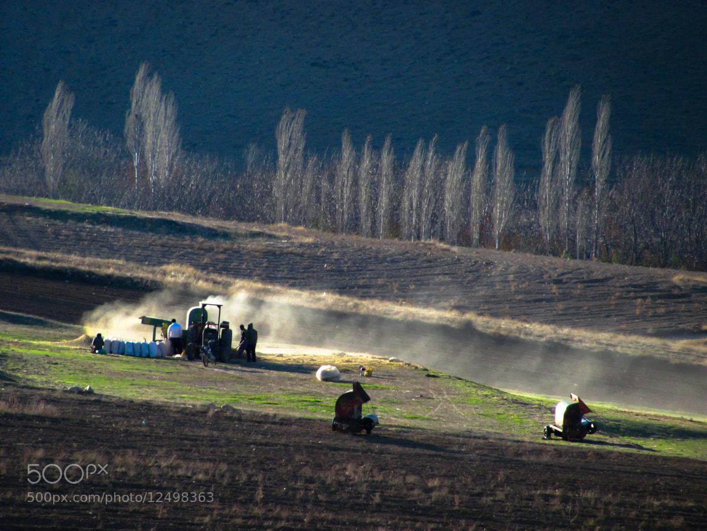 Photograph Harvest by Morteza Nemati on 500px