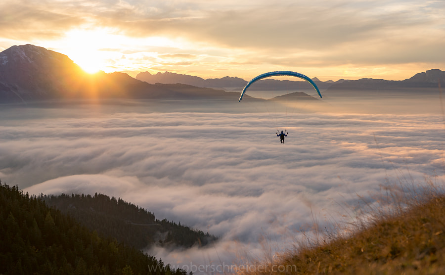 Sunset Paragliding above the Clouds by Christoph Oberschneider on 500px.com