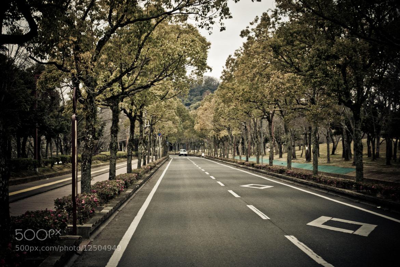 Photograph Himeji by Amod Mulay on 500px