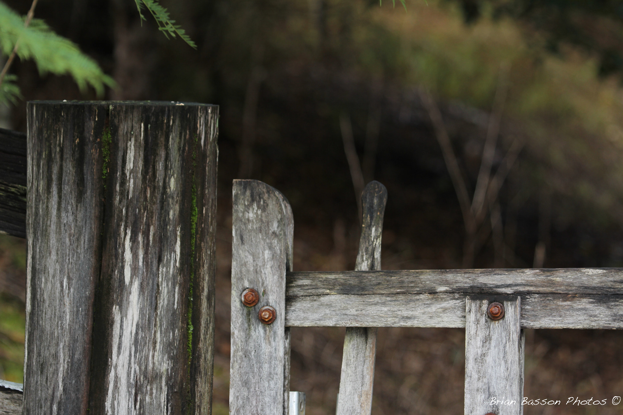 Photograph Old Farm Gatepost by Brian Basson on 500px