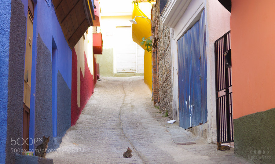 Photograph Street of the colours by Aleksander Hadji on 500px
