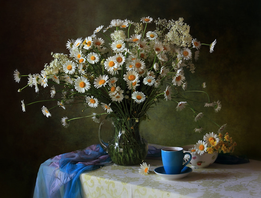With daisies, автор — Tatiana Skorokhod на 500px.com