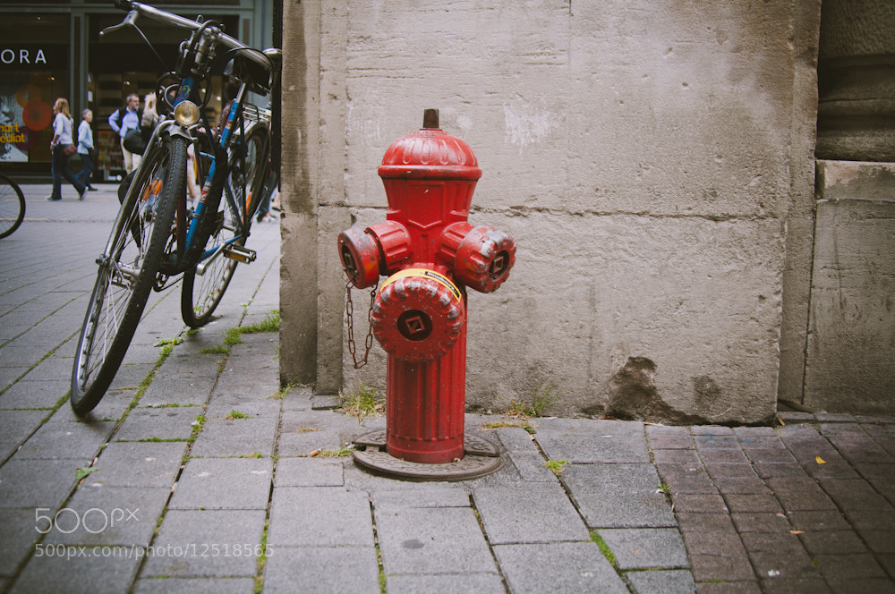 Photograph Untitled by Elene Noizou on 500px