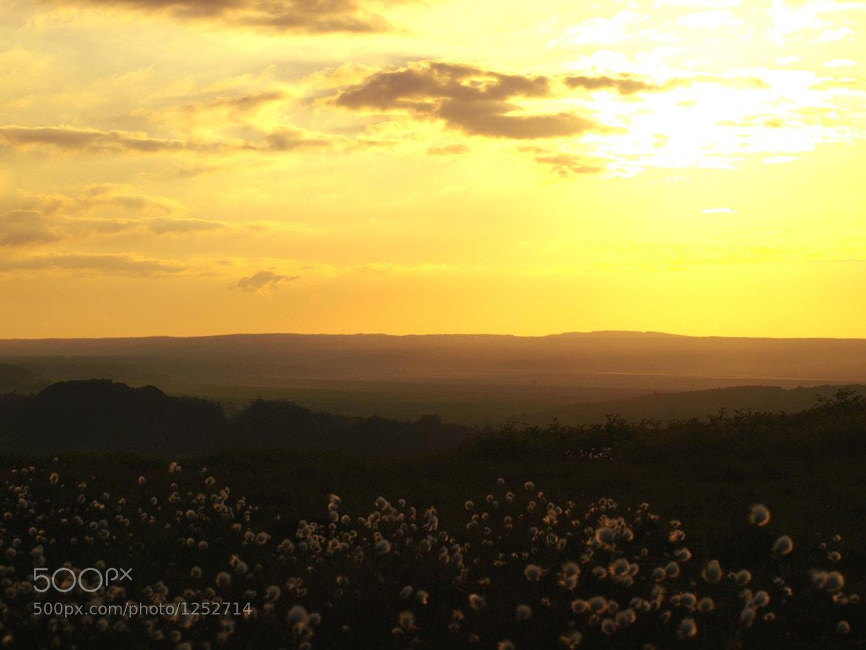 Photograph Sunset by Max von Schneider on 500px