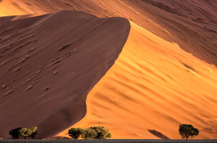 Sundown at Dune 37