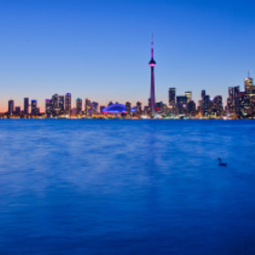 Toronto Skyline by Marc Bruxelle (MarcBruxelle)) on 500px.com