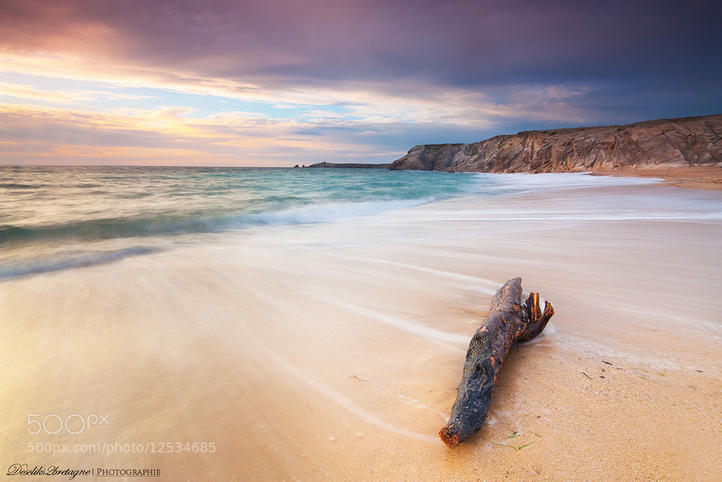 Photograph Robinson by LE DILHUIT  Nicolas on 500px