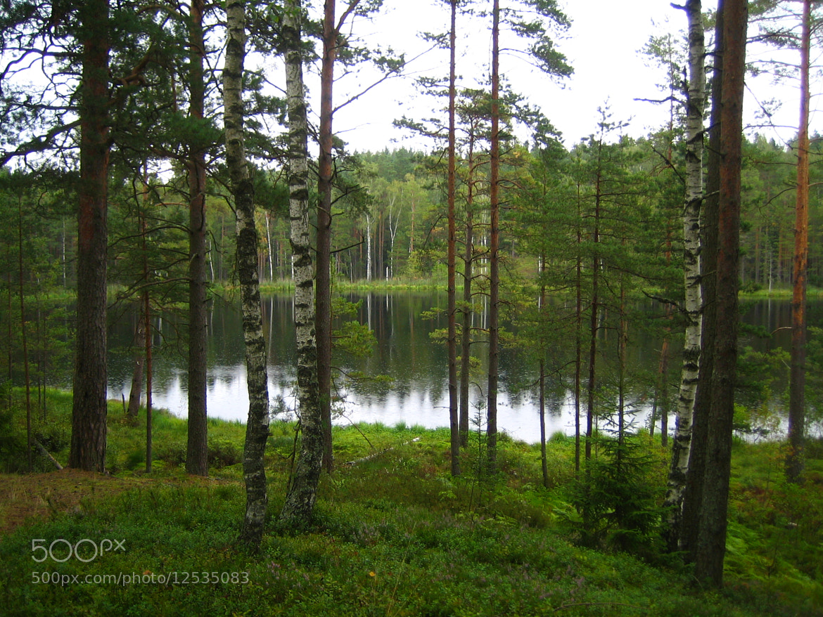 Photograph View of the lake by Aleksandra Cimbale on 500px
