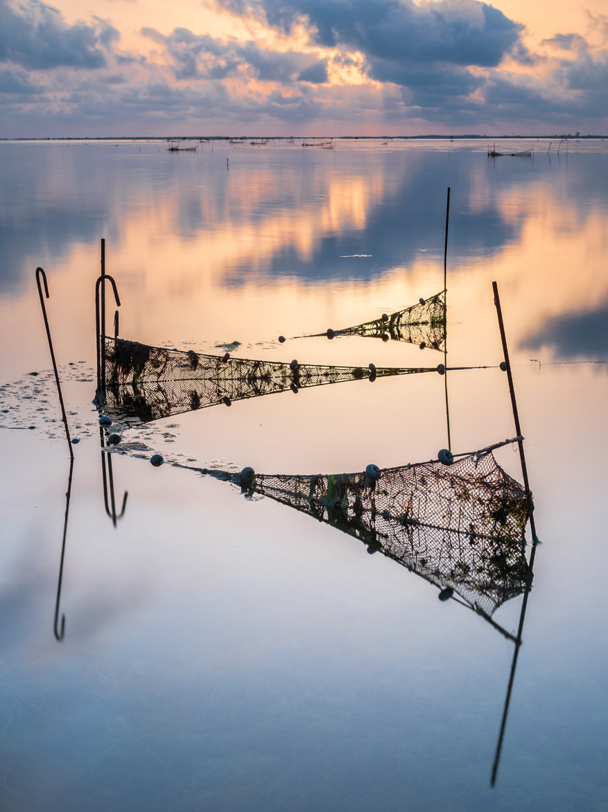 Photograph Redes by Francisco Narro on 500px
