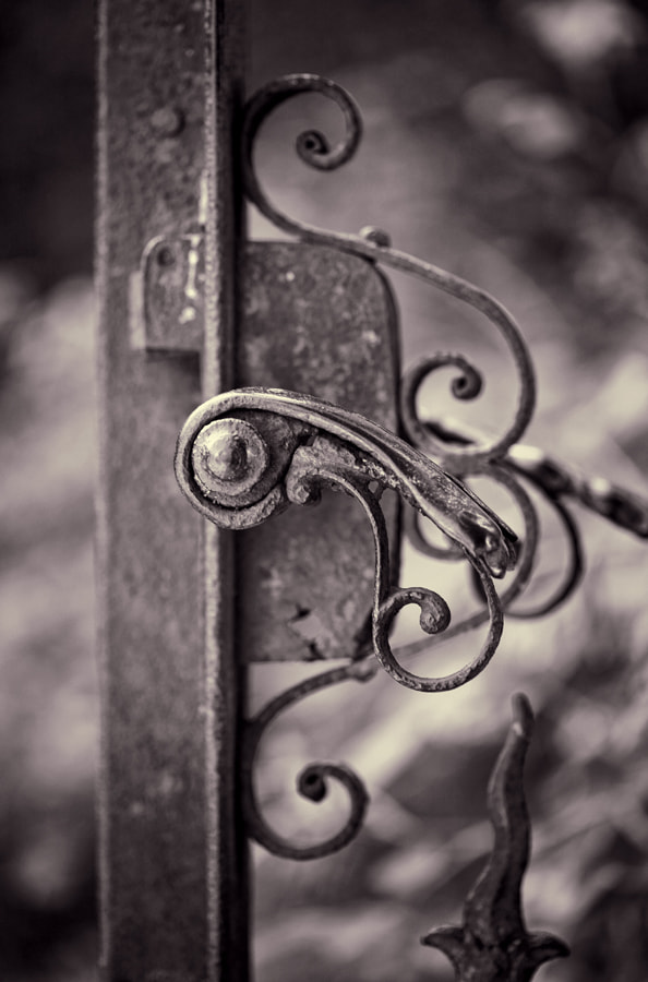 Photograph Old garden gate by Andreas Kaspar on 500px