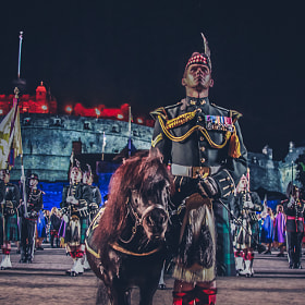 The Royal Regiment mascot, Shetland pony Cruachan III  (aged 23) has now retired after 19 years of m by Richard Findlay (fotoflingscotland)) on 500px.com