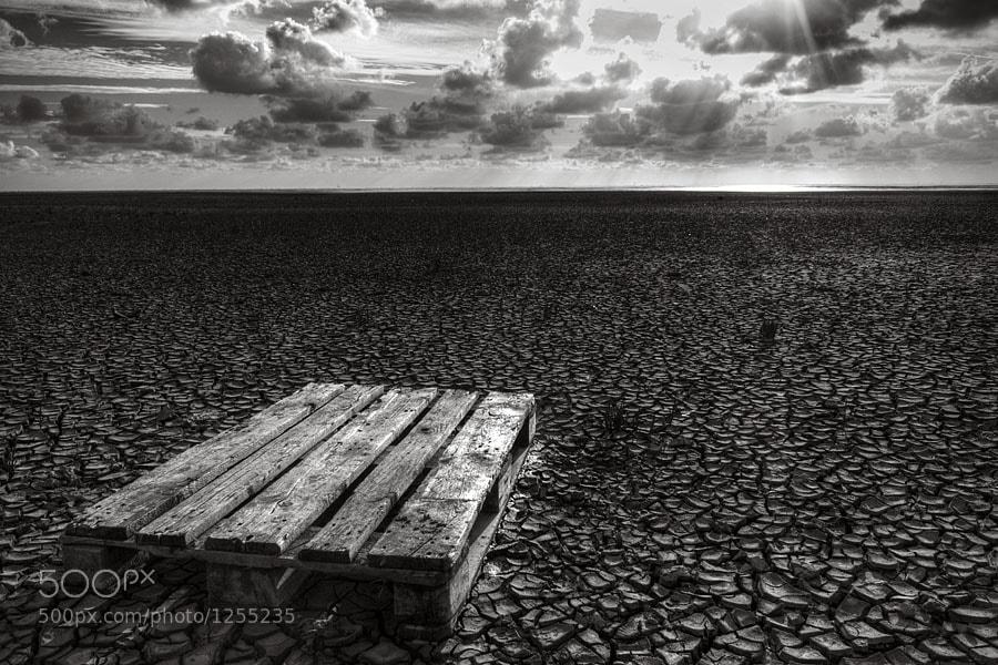 Photograph Endless by Harry Wedzinga on 500px