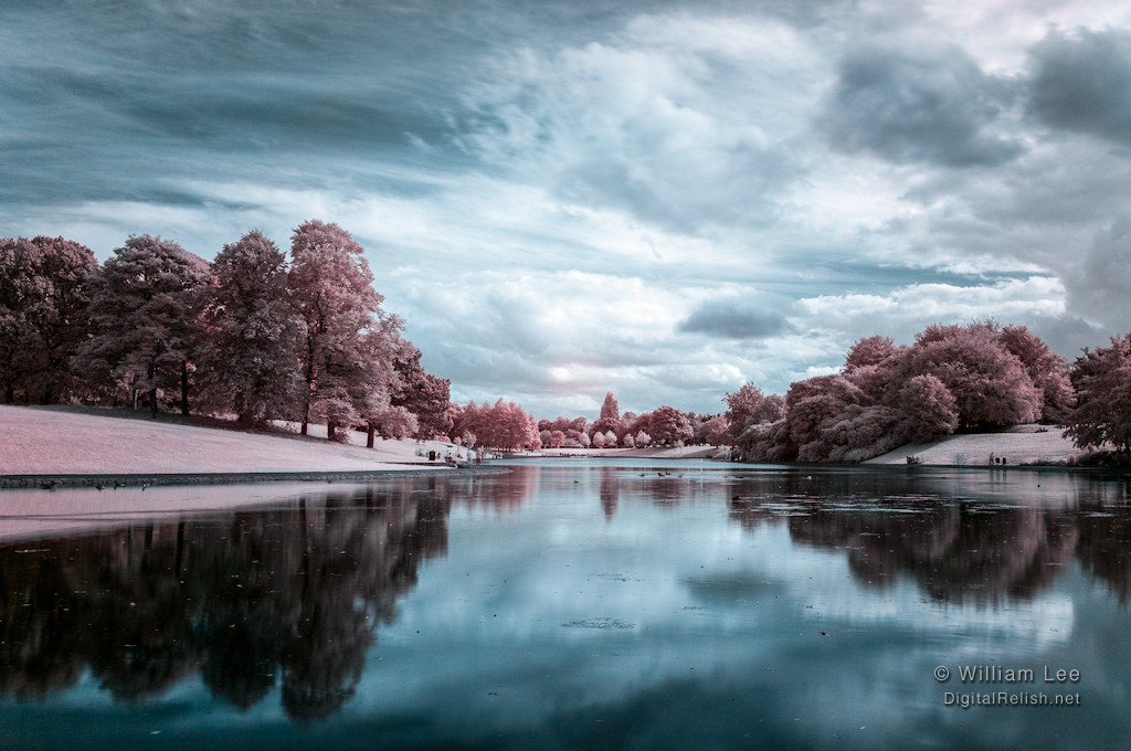 Photograph Sefton Park infrared by Will Lee on 500px