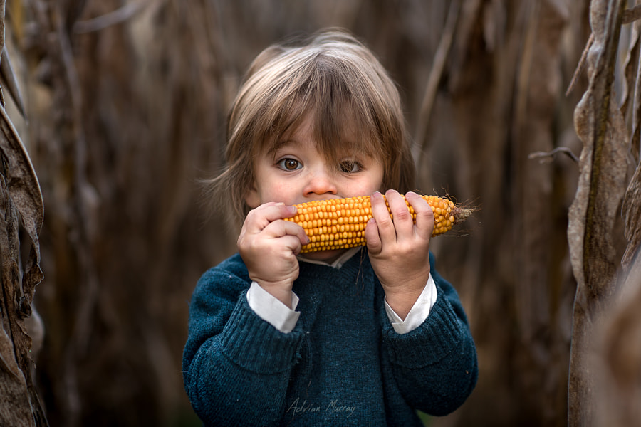 Take a Bite Out of Fall by Adrian C. Murray on 500px.com