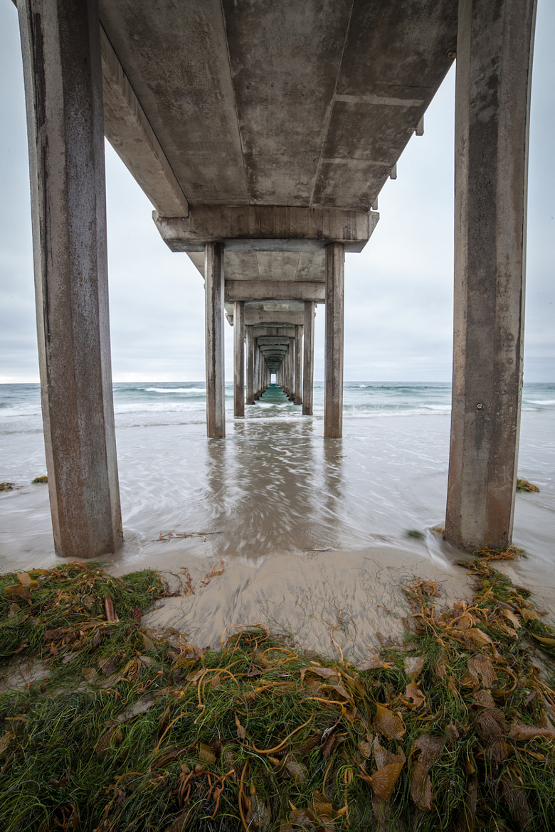 Photograph Scripps Pier Fisheye by Ross Manges on 500px