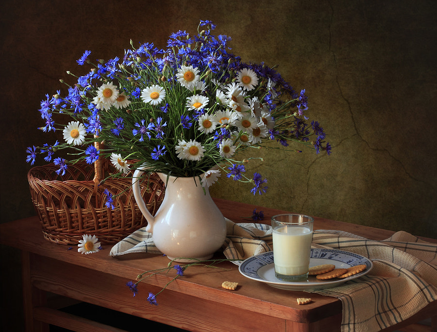With cornflowers and daisies, автор — Tatiana Skorokhod на 500px.com