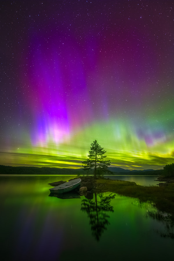 Where the Wild Things Are by Ole Henrik Skjelstad on 500px.com