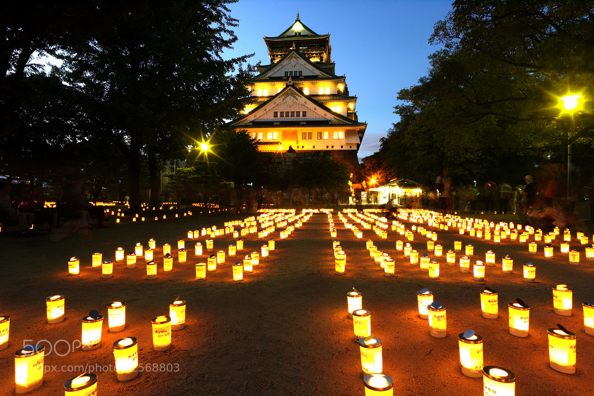 Photograph Light of the castle by Mitsuru Moriguchi on 500px