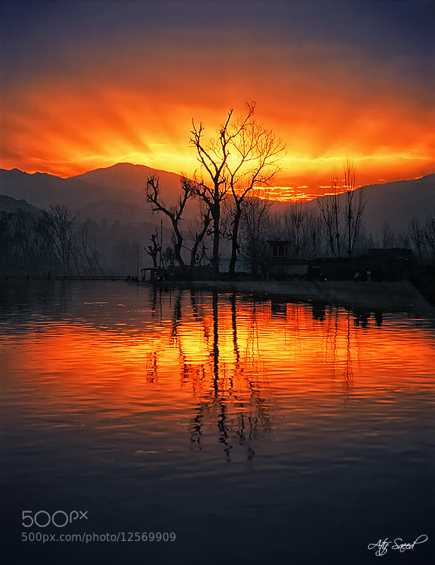 Photograph .. by Atif Saeed on 500px