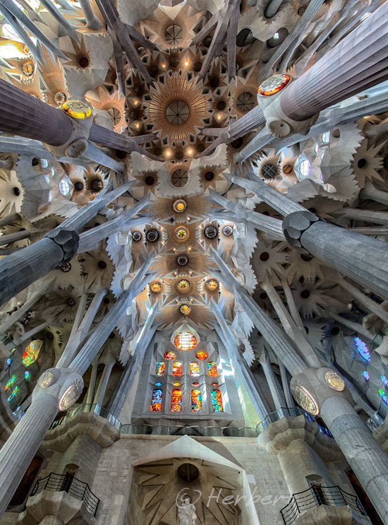 Photograph Sagrada Famillia ceiling by Herbert Wong on 500px
